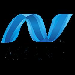 Net web application development